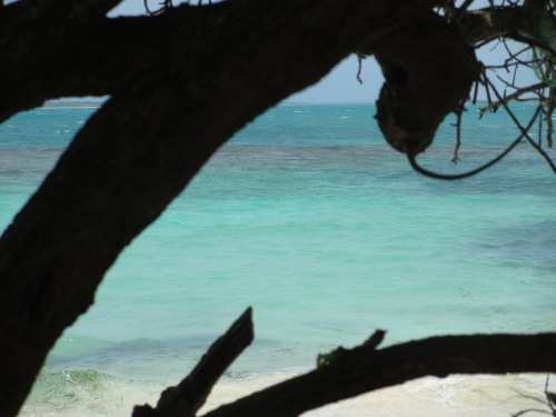 At Jabberwock Beach (north side of the island).